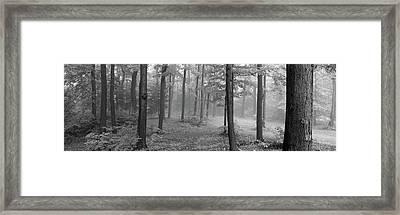 Chestnut Ridge Park, Orchard Park, New Framed Print