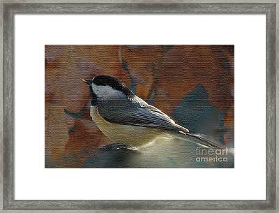 Framed Print featuring the photograph Chickadee In Autumn by Janette Boyd