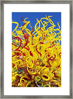 Chihuly Glass Framed Print
