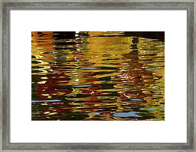 Framed Print featuring the photograph Chihuly Reflections IIi by John Babis