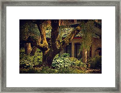 Chinese Garden Framed Print by Maria Angelica Maira
