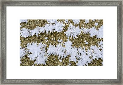 Close Up Of Hoar Frost Along The North Framed Print by Kevin Smith