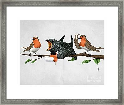 Cock Robin Wordless Framed Print by Rob Snow