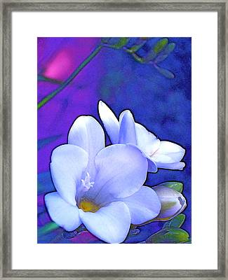 Color 4 Framed Print by Pamela Cooper