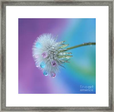 Come True Framed Print by Krissy Katsimbras