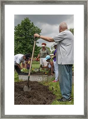 Community Gardening Framed Print by Jim West