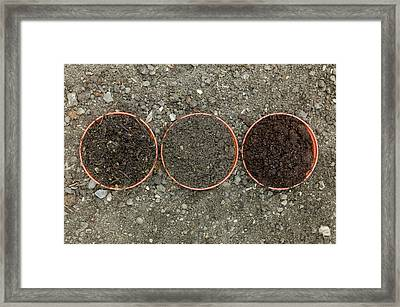 Comparison Of Composts To Garden Soil Framed Print