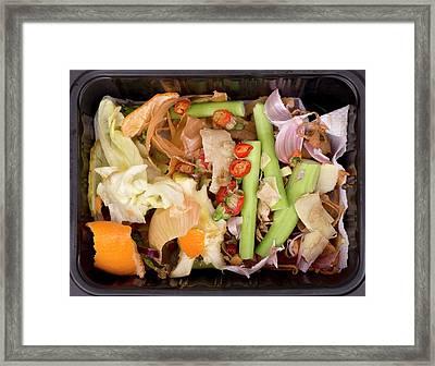 Composting Kitchen Waste Framed Print