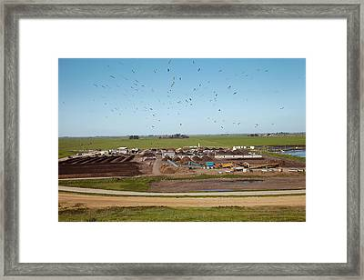 Composting Recycling Facility Framed Print by Peter Menzel