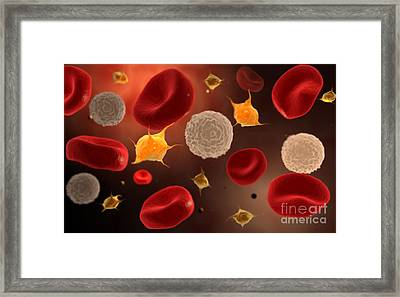 Conceptual Image Of Platelets With Red Framed Print by Stocktrek Images