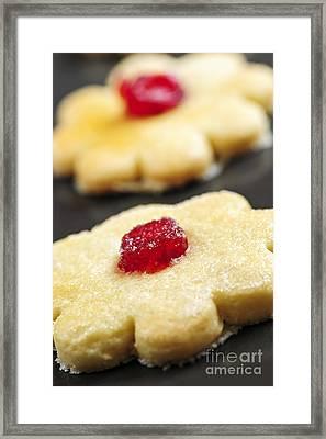 Cookies Framed Print by Elena Elisseeva