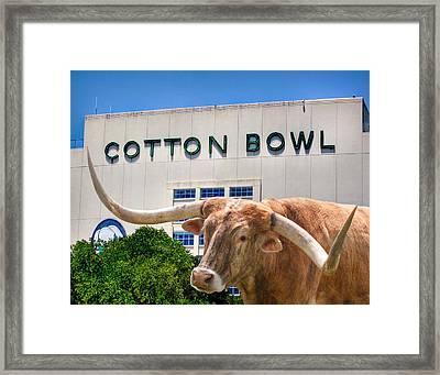 Cotton Bowl Framed Print