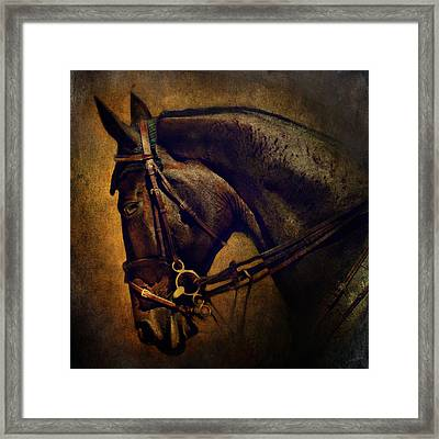 Cover Girl Framed Print by Lyndsey Warren