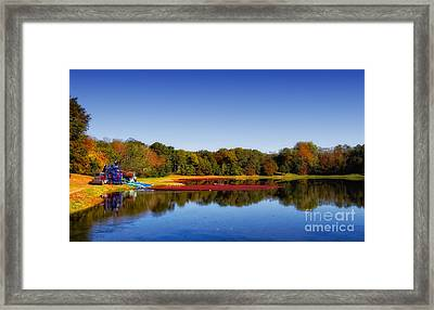 Framed Print featuring the photograph Cranberry Farming by Gina Cormier