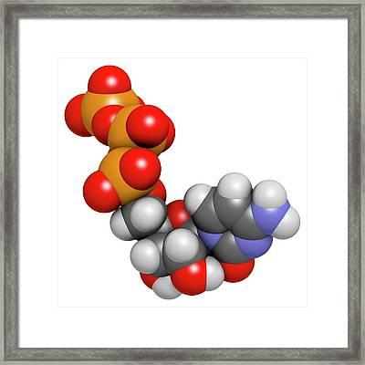 Cytidine Triphosphate Molecule Framed Print by Molekuul
