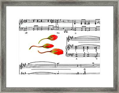 Dancing Buds Framed Print