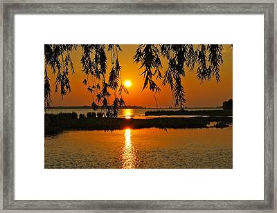 Dancing Light Framed Print by Frozen in Time Fine Art Photography