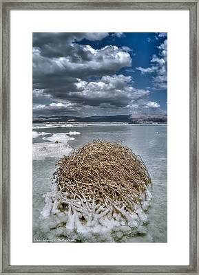 Dead Sea Monuments Of Nature  Framed Print by Isaac Silman