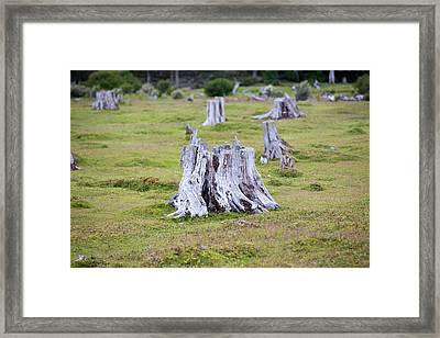 Deforestation In The Martial Mountains Framed Print by Ashley Cooper