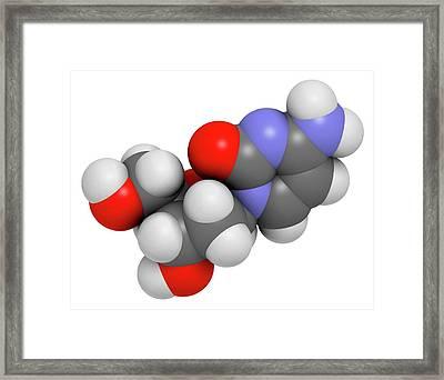 Deoxycytidine Nucleoside Molecule Framed Print