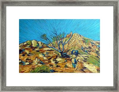 Desert Tree In Blazing Sun Framed Print by Gerhardt Isringhaus