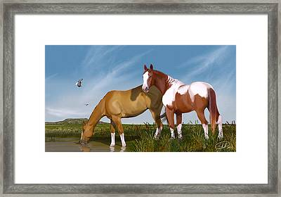 Destiny On Buffalo Plateau Framed Print
