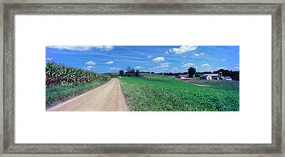 Dirt Road Passing Through A Field Framed Print by Panoramic Images