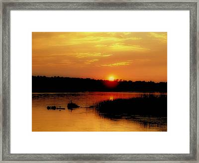 Discovery Framed Print by Tom Druin
