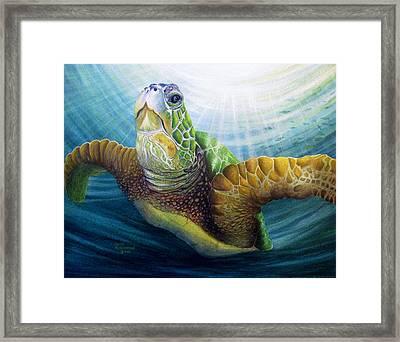 Diving The Depths Framed Print by David Richardson