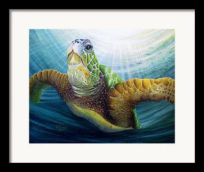 Marine Mamals Framed Prints
