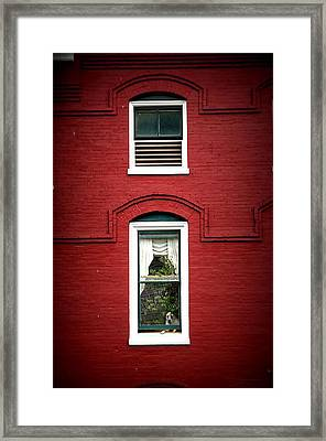 Doggie In The Window Framed Print by Laurie Perry