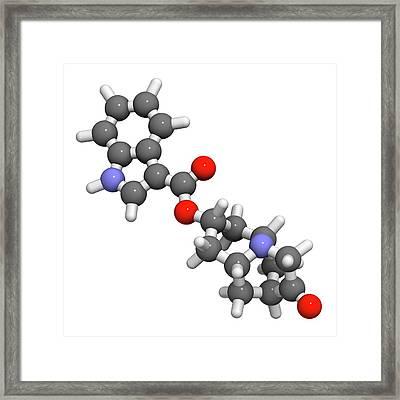 Dolasetron Nausea Drug Molecule Framed Print by Molekuul