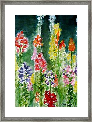 Donna's Snaps Framed Print