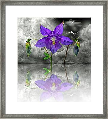 Dream Framed Print by Manfred Lutzius