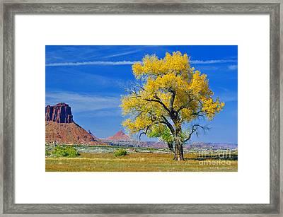 Dugout Ranch  Framed Print