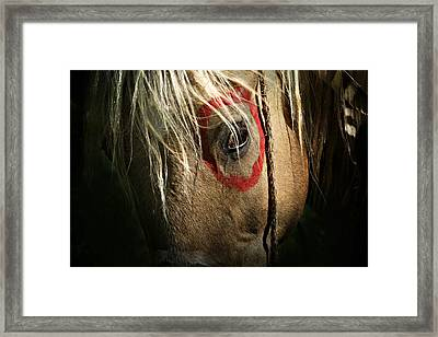 Eagle Eye Framed Print
