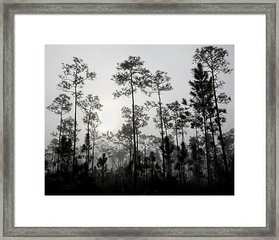 Early Morning Fog Landscape Framed Print by Rudy Umans