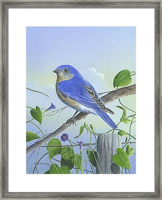 Framed Print featuring the painting Eastern Bluebird by Mike Brown