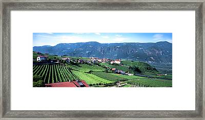Elevated View Of Houses And Vineyard Framed Print by Panoramic Images