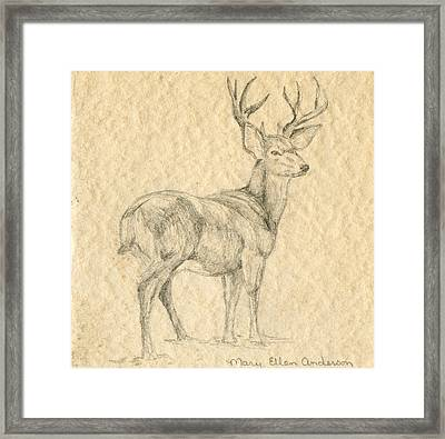 Framed Print featuring the drawing Elk by Mary Ellen Anderson