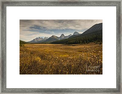 Engadine Meadow Framed Print by Ginevre Smith