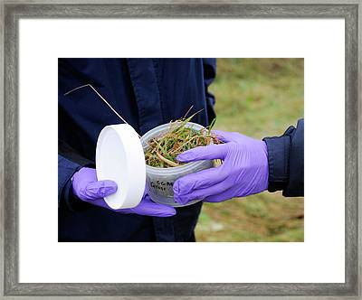 Environmental Monitoring Framed Print by Public Health England