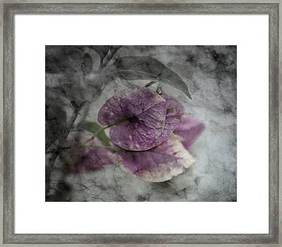 Epitaph Framed Print by David Fox