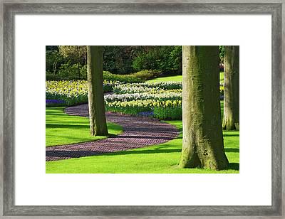 Europe, Holland, Lisse, Keukenhof Framed Print by Jaynes Gallery