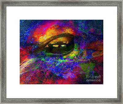 Eye Of Universe Framed Print by Irina Hays
