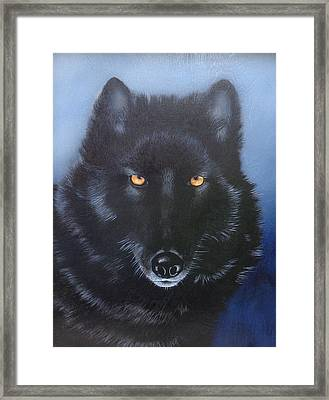 Eyes Of The Wolf Framed Print by Joe Lisowski