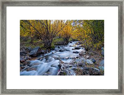 Fall At Big Pine Creek Framed Print by Cat Connor