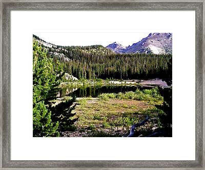 Falling Reflections Framed Print