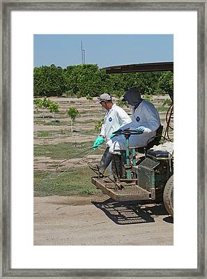 Farm Workers Applying Pesticide Framed Print by Jim West