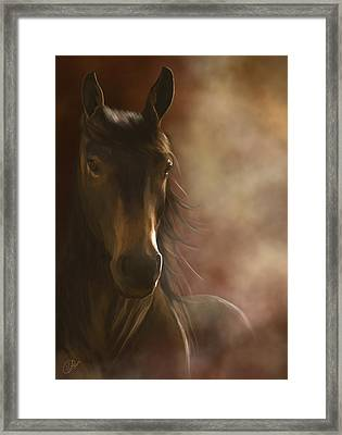 Feeling The Warmth Framed Print by Kate Black